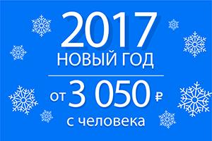 http://talka.ru/upload/iblock/c79/ng_2017.png